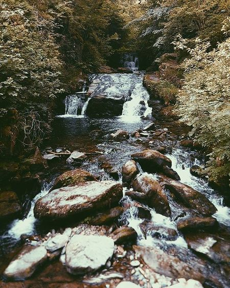 TBT  on the way to Valleyoftherocks via Watersmeet Lynton Lynmouth Waterfall Whitewater Tributary