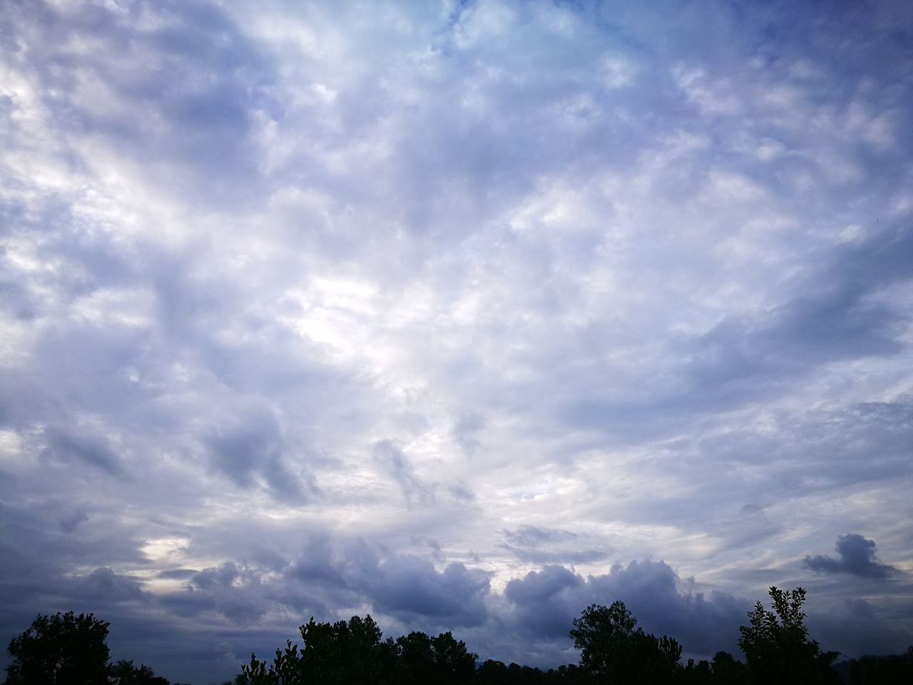 sky, beauty in nature, nature, cloud - sky, low angle view, tranquility, scenics, tree, no people, tranquil scene, day, outdoors, blue
