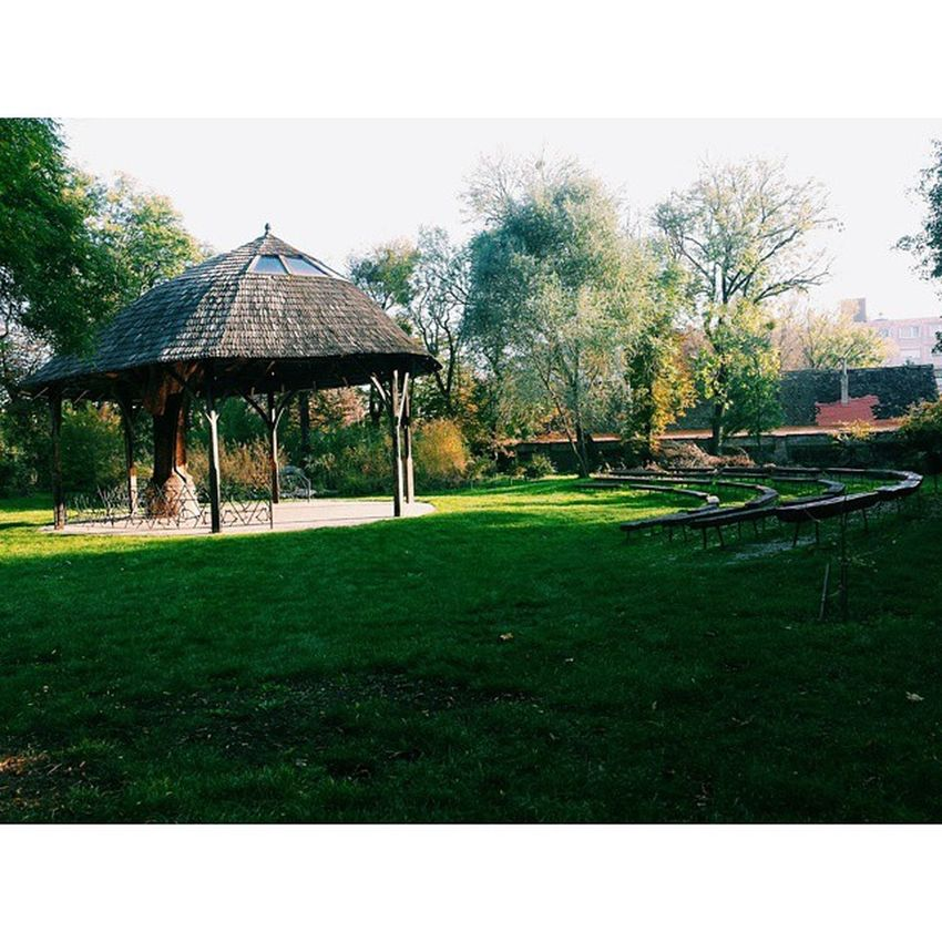 Nature Pavilon Theatre Autumn vscostyle vscohungary vsco vscogood vscocam vscoboss vscolife vscogram