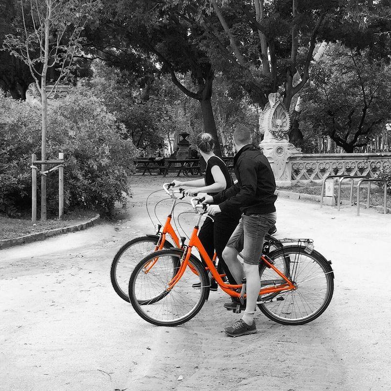 Colorsplash Streetphotography Streetphoto Bikes Bikesaroundtheworld Popular Photos Eye4photography  TheWeekOnEyeEM Iphoneonly OpenEdit
