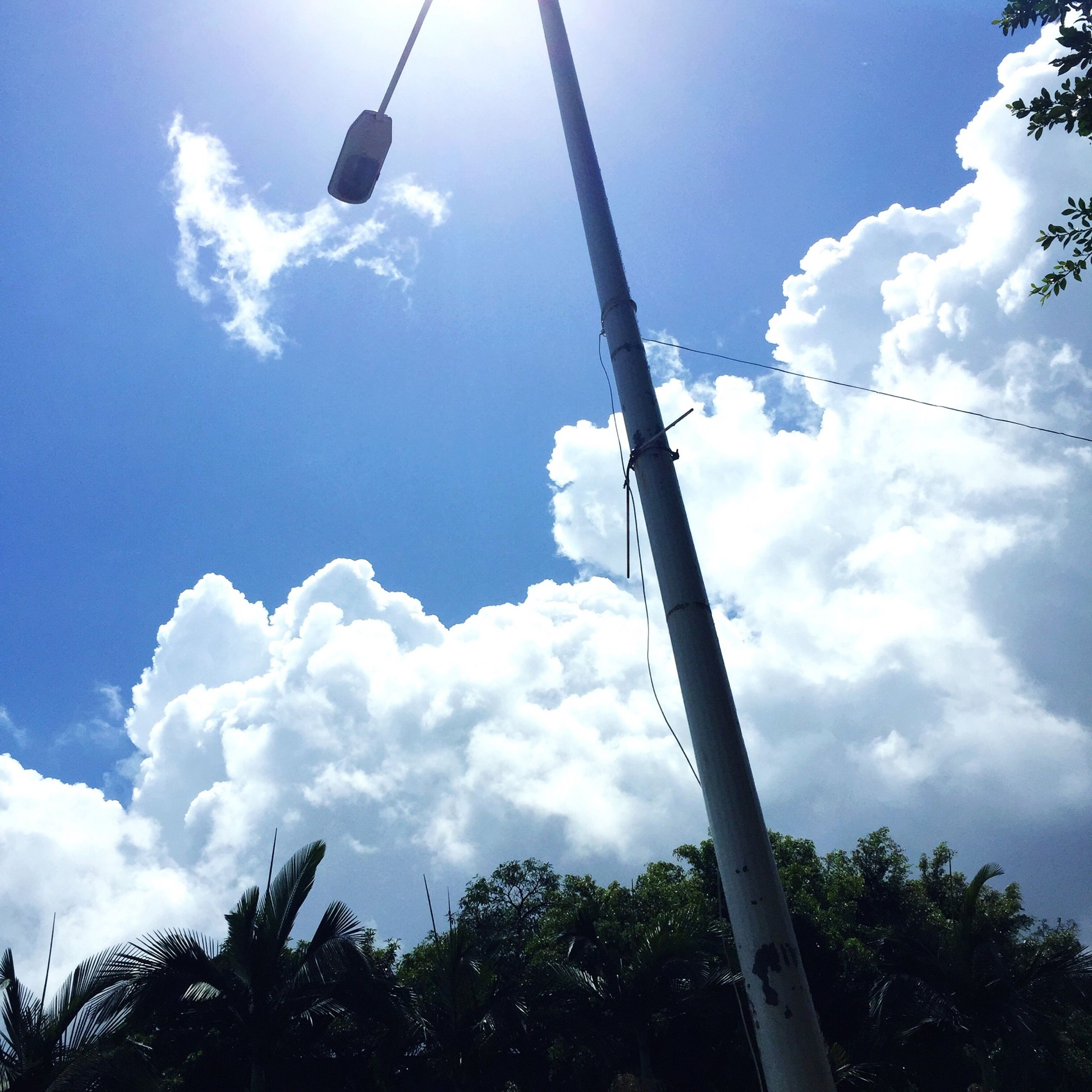 low angle view, sky, cloud - sky, tree, blue, transportation, cloud, cloudy, day, mode of transport, nature, outdoors, tranquility, overhead cable car, travel, street light, beauty in nature, scenics, no people, vapor trail