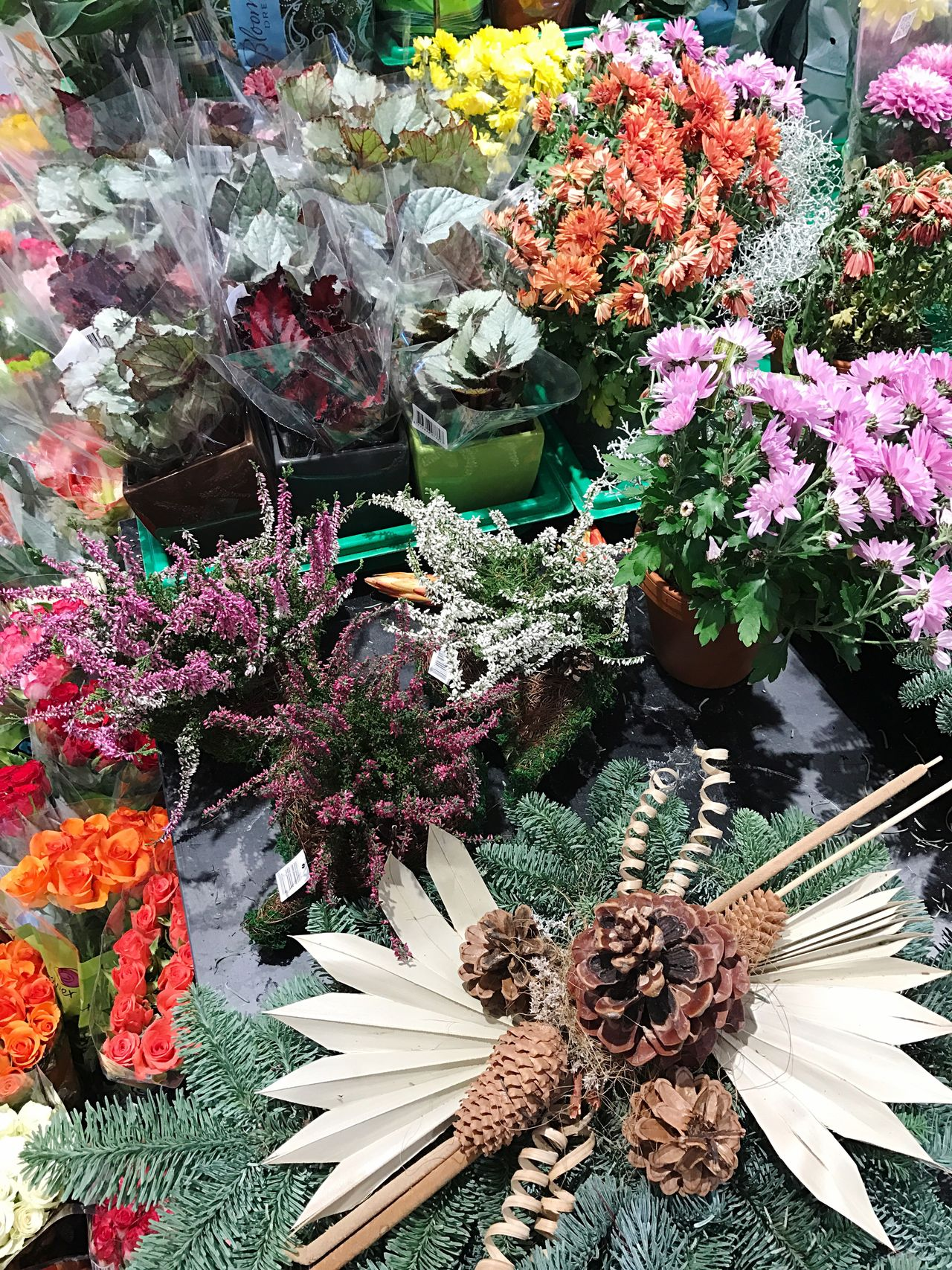 Flower Flowers Flower Collection Flower Shop Beauty In Nature Plant Nature Growth Multi Colored Flower Head For Sale No People Bouquet Day Variation Flower Market Close-up Blossom Freshness