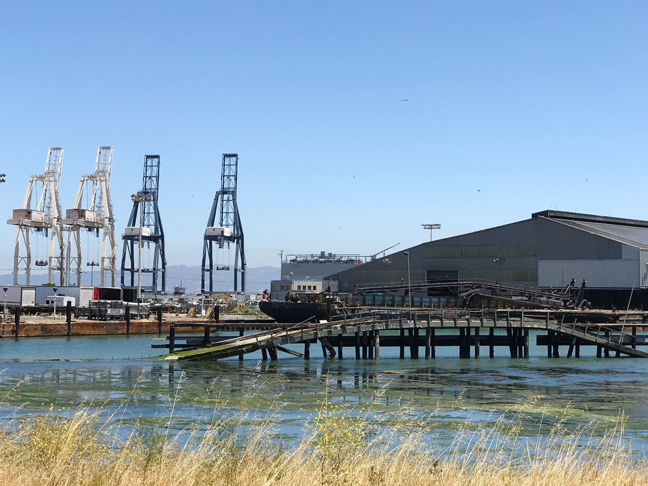 Built Structure Architecture Water Clear Sky Day Outdoors Building Exterior No People River Bridge - Man Made Structure Nature Harbor Nautical Vessel Sky Gantry Cranes Herons Head Park