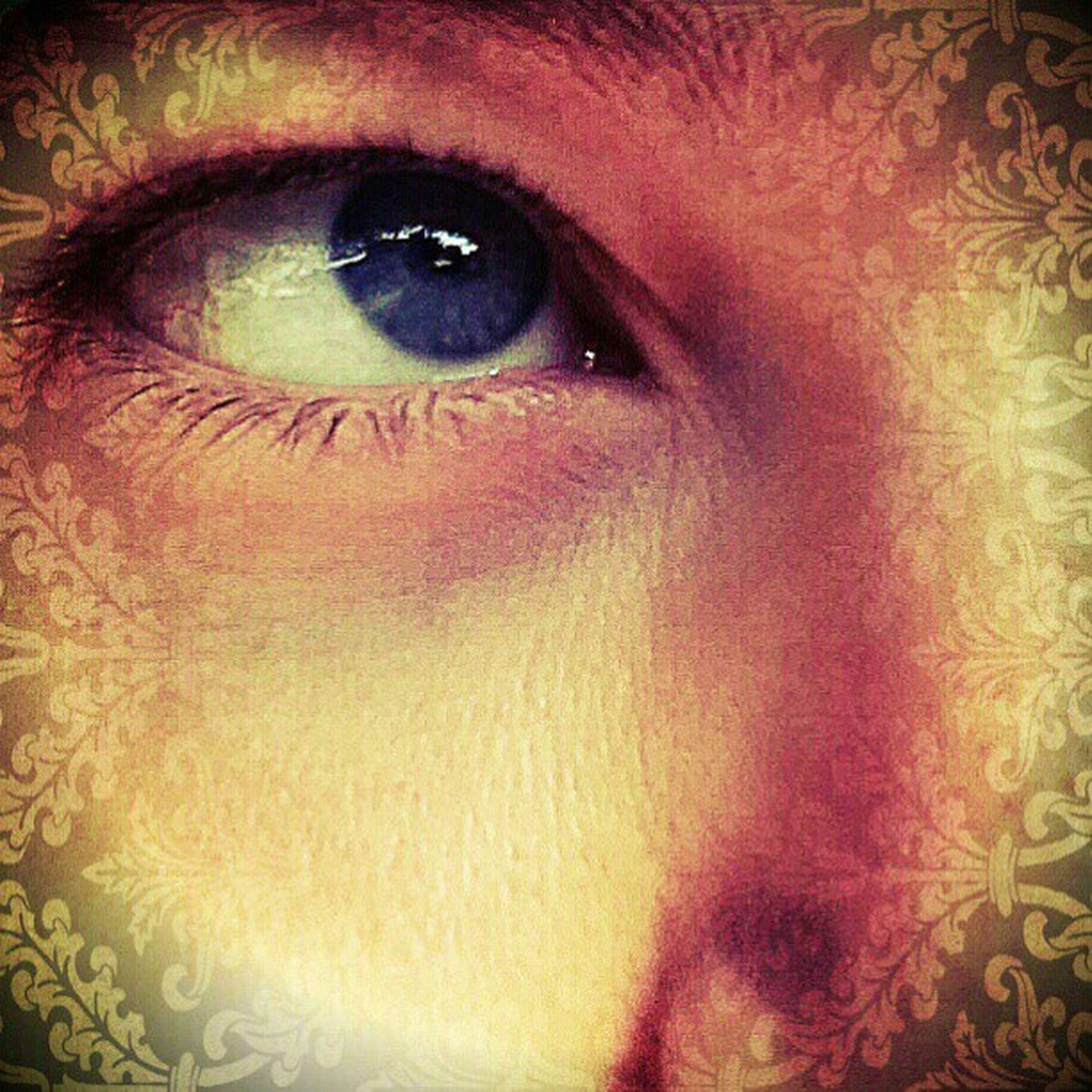 indoors, human eye, looking at camera, portrait, close-up, human face, headshot, young adult, lifestyles, front view, part of, person, human skin, eyelash, eyesight, leisure activity, make-up