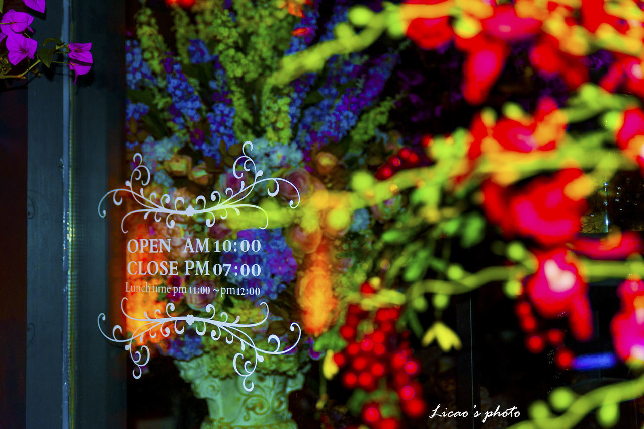 multi colored, no people, close-up, text, outdoors, fragility, day, freshness