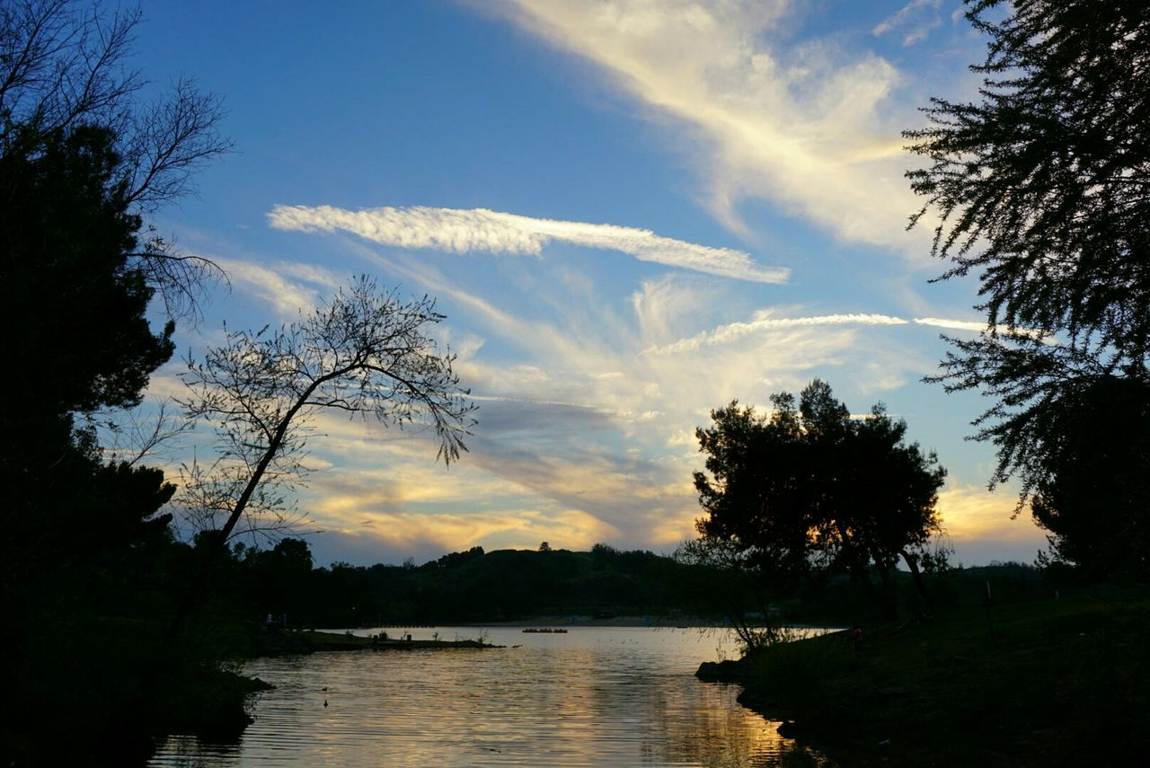 tree, nature, sky, silhouette, no people, lake, water, beauty in nature, branch, landscape, outdoors, scenics, sunset, day