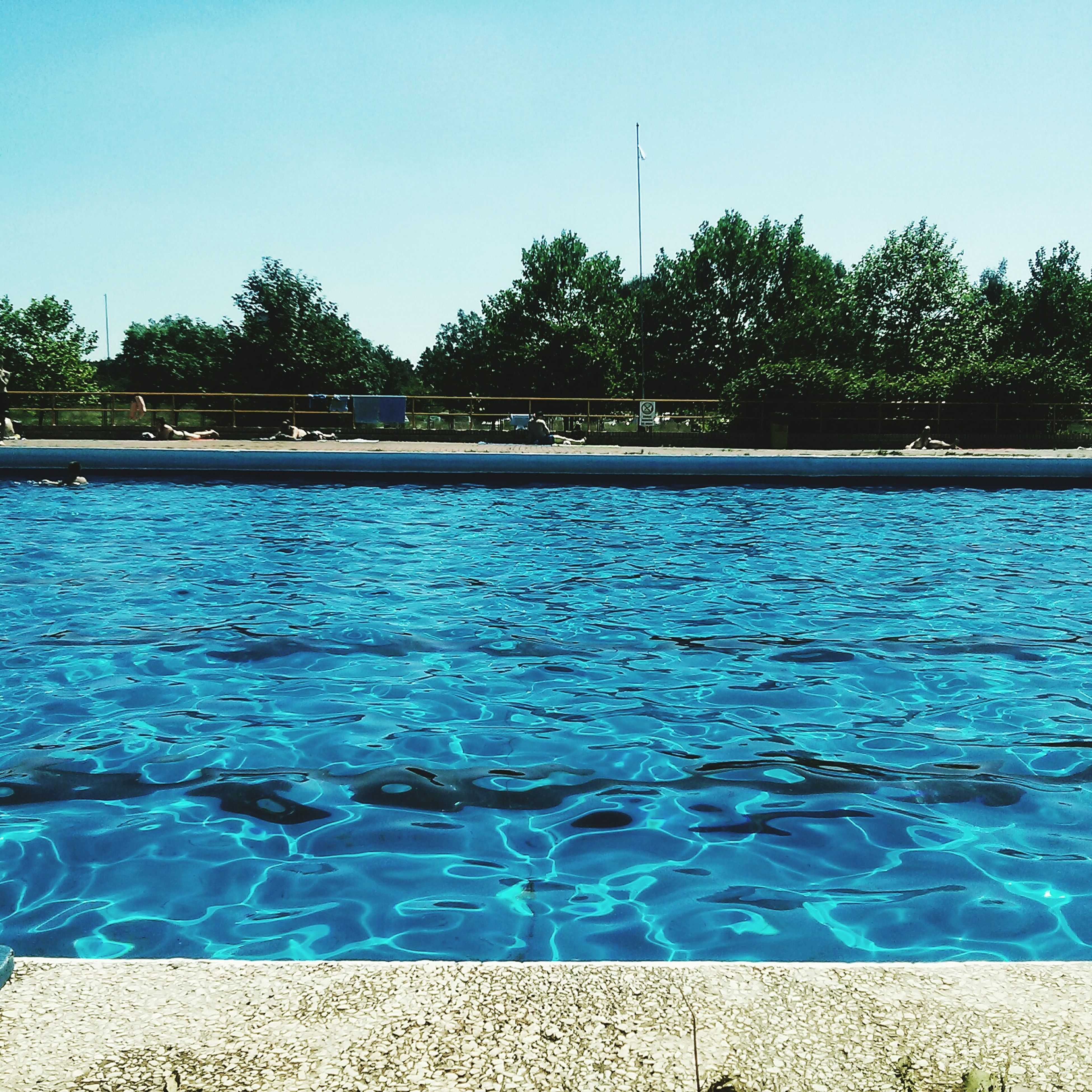 water, blue, tree, swimming pool, tranquility, tranquil scene, nature, beauty in nature, scenics, rippled, sunlight, growth, turquoise colored, day, idyllic, outdoors, sky, no people, calm, green color, sunny, green
