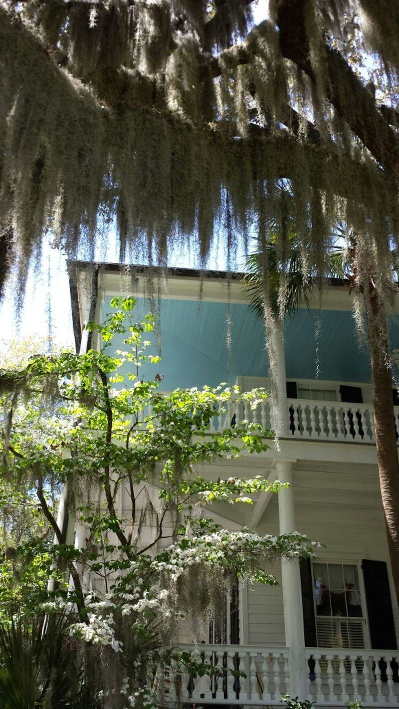 Wrap around porches, spanish moss and Antebellum homes. Not to mention the history of this place! All so fascinating!