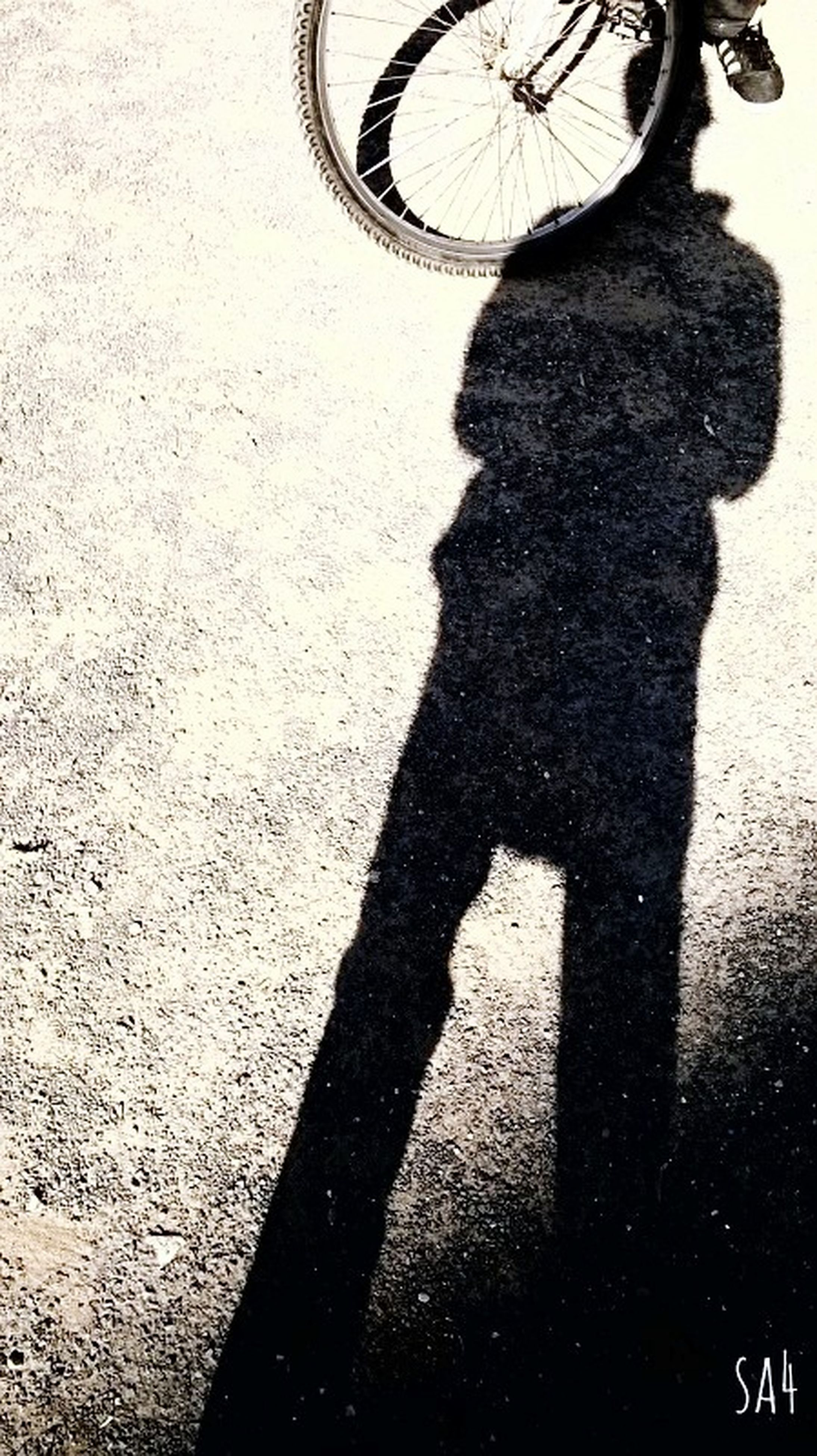 shadow, lifestyles, street, silhouette, focus on shadow, men, leisure activity, sunlight, bicycle, unrecognizable person, road, walking, standing, transportation, high angle view, outline, person, outdoors