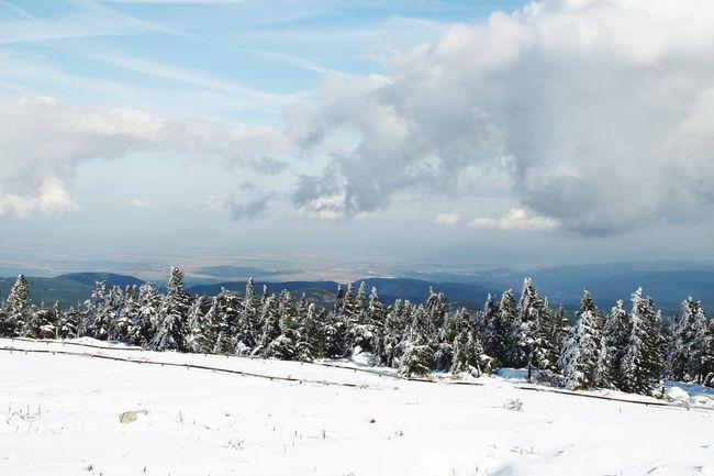 Wintertime Winter Frosted Trees Brocken Harz Harz Bilder Enjoying Life Sachsen-Anhalt Mountains Harz Im Winter BrockenBlick Sky And Clouds Clouds And Sky Snow Snow ❄ Niedersachsen