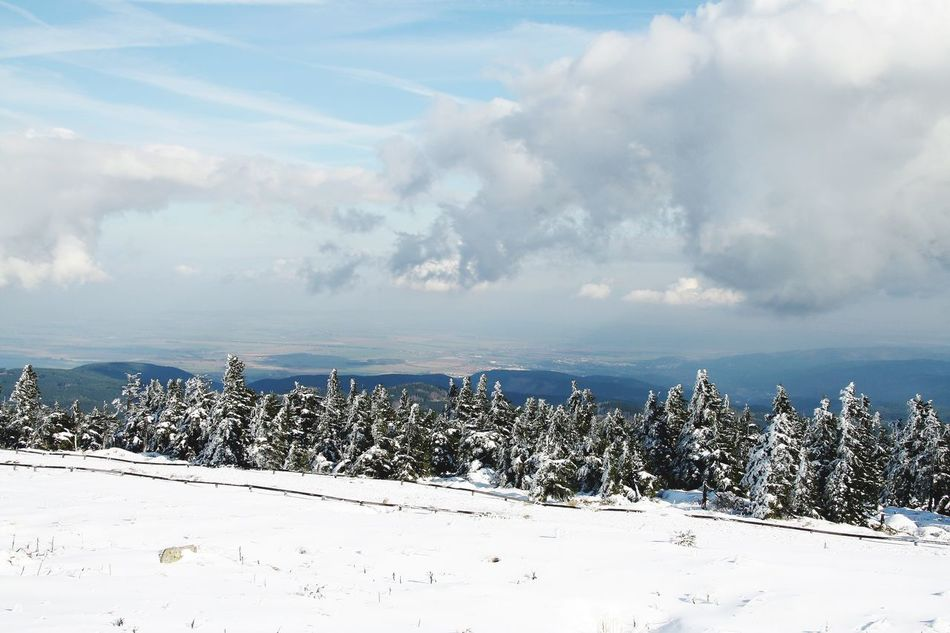 Wintertime Winter Frosted Trees Brocken Harz Harz Bilder Enjoying Life Sachsen-Anhalt Mountains Harz Im Winter BrockenBlick Sky And Clouds Clouds And Sky Snow Snow ❄ Niedersachsen