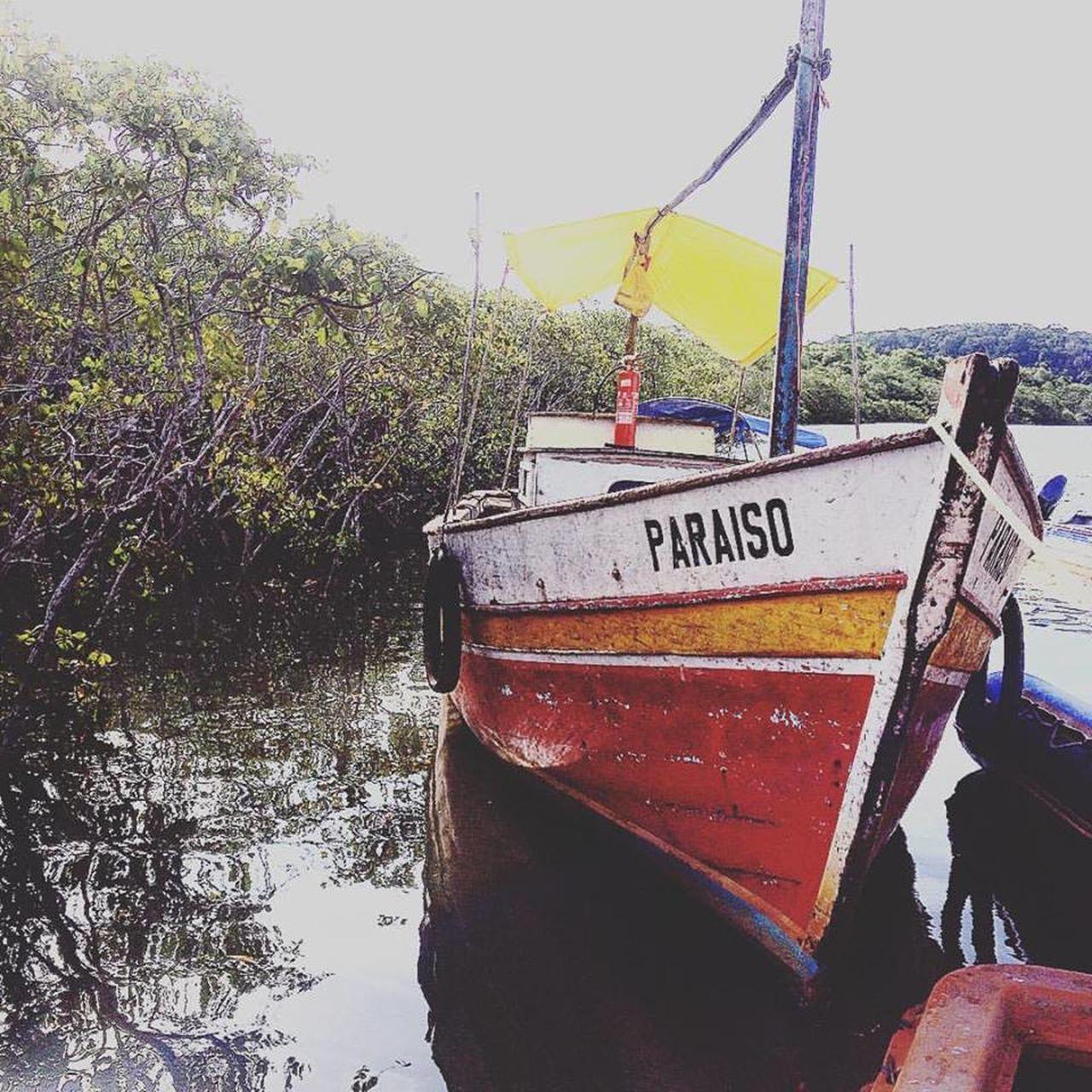 Bahia Brasil Cabralia Paraíso