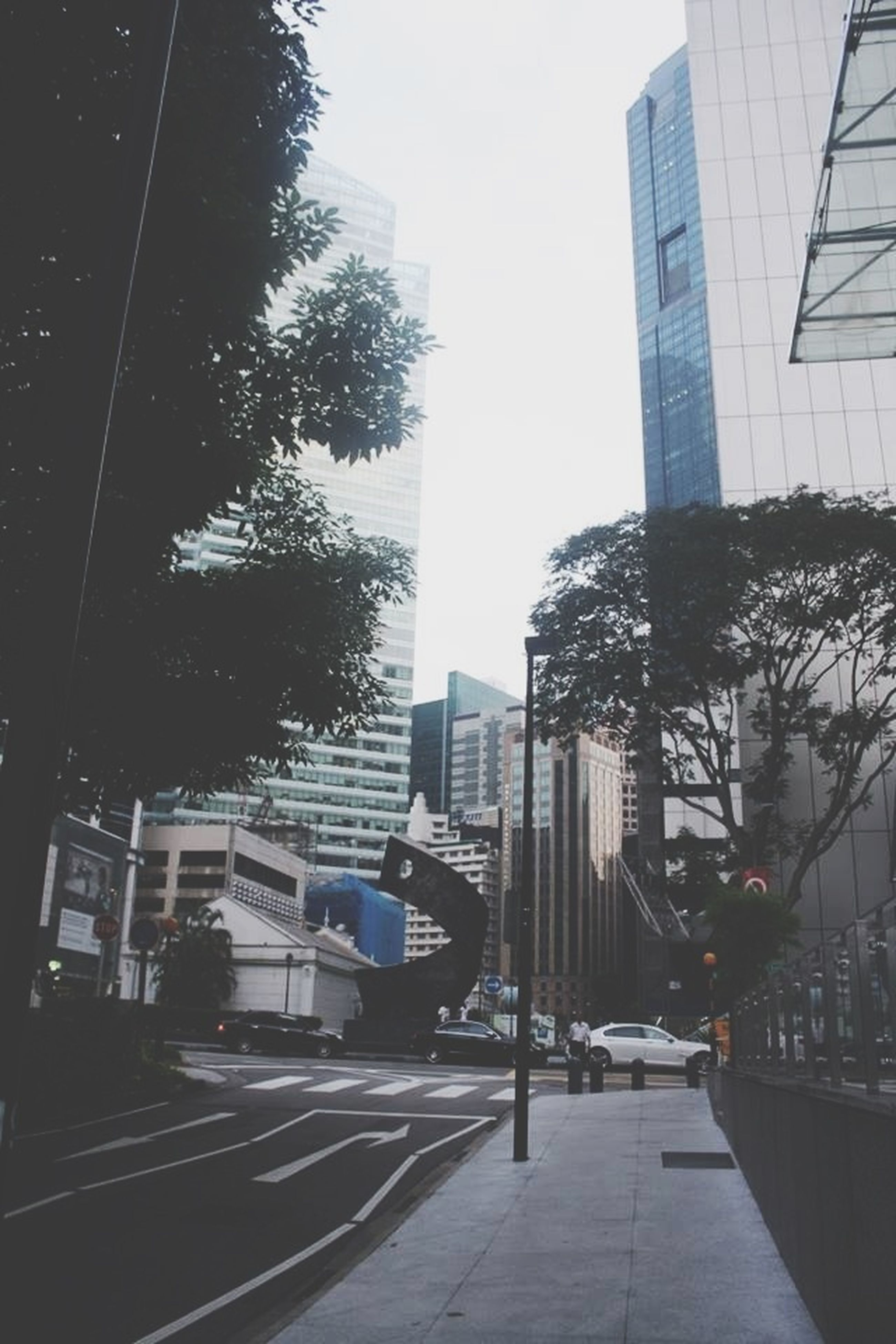 building exterior, architecture, built structure, city, street, clear sky, tree, the way forward, building, road, transportation, skyscraper, city life, office building, street light, tall - high, day, tower, modern, residential building