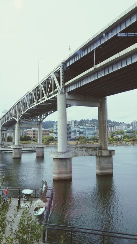 View From The Window... Bridges Portland, OR Great Views Great Museum Falliscoming
