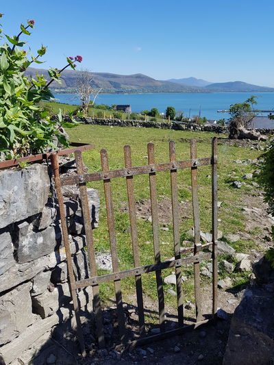 Carlingford Ireland May Day Outdoors Sea Sky No People Water Tree Gate