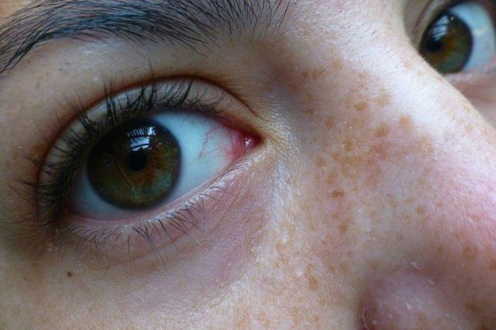 Eyes; Windows into the soul Macro_collection Eyes Are Soul Reflection Eyes Never Lie Eyesgreen Eyes Hazel Eyes  Hazeleyes Up Close And Personal Up Close Face Up Close & Personal Iris Eyeballs  Faces Of EyeEm Faces Freckles On My Face (: Eyelashes Emeraldgreen