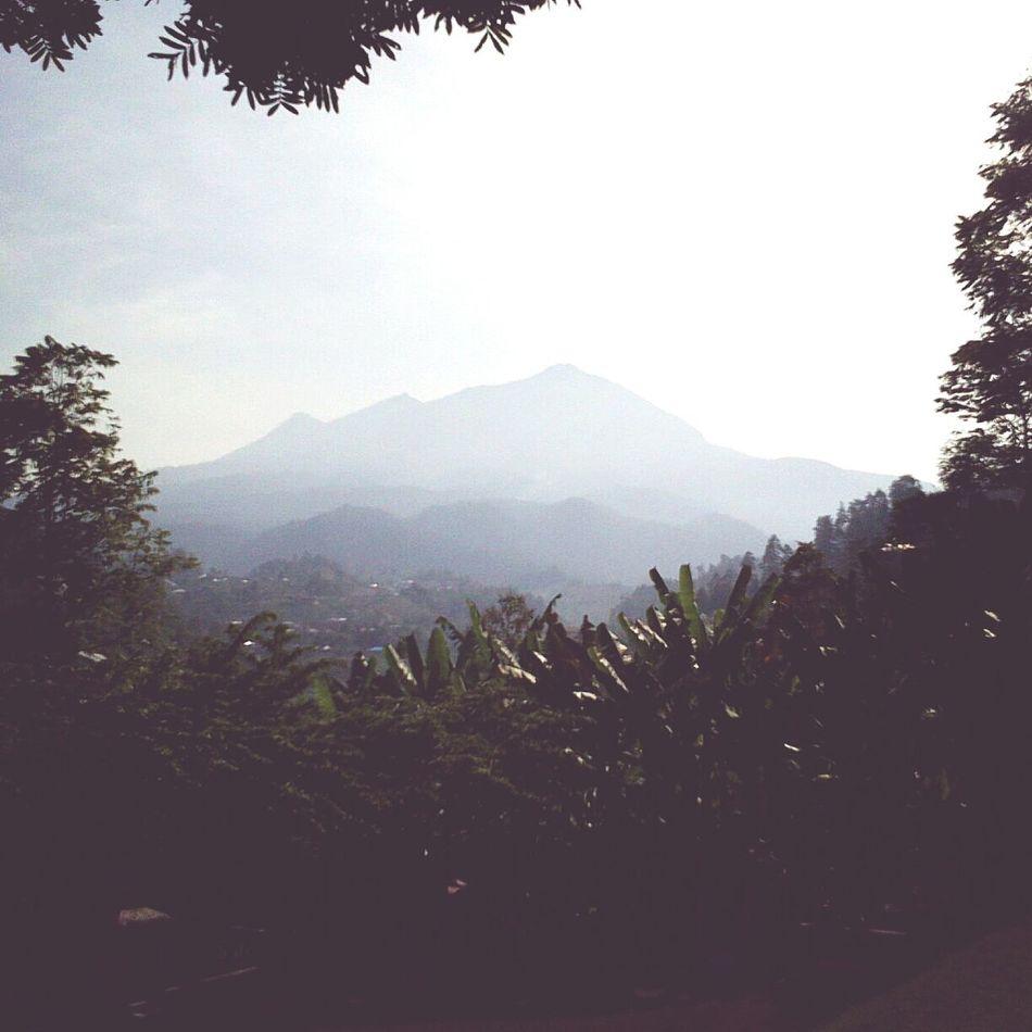 Mountain View at Tawamangun. Life is always amazing.