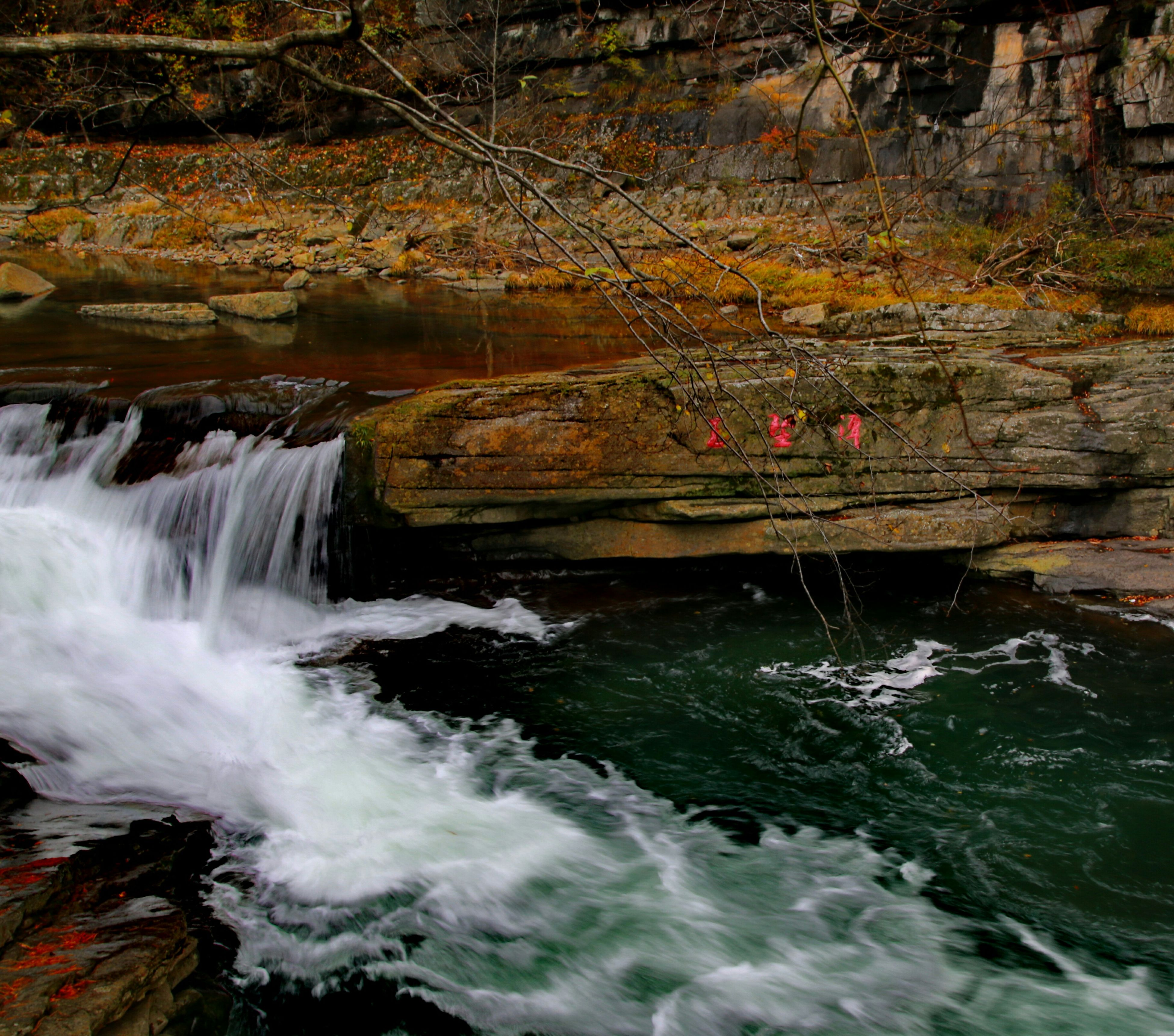 water, flowing water, waterfall, motion, long exposure, flowing, rock - object, beauty in nature, nature, forest, waterfront, river, stream, scenics, rock formation, rock, surf, splashing, blurred motion, day