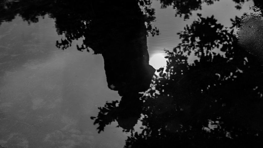 A reflection of a kid, trees, sky and sun on the puddle After The Rain Black And White Black And White Photography Bnw Bw Photography Day Kid Nature One Person Outdoors People Puddle Real People Reflection Silhouette Sky Sun Tree Water