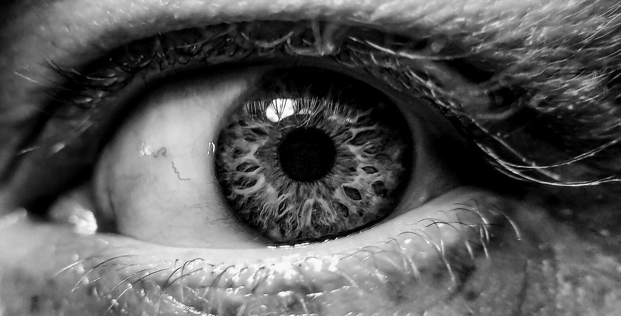 human eye, real people, sensory perception, eyelash, human body part, one person, eyesight, macro, eyeball, close-up, iris - eye, indoors, lifestyles, portrait, day, people, adult