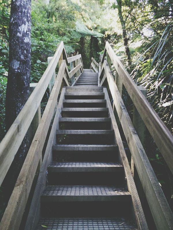 Ngaruawahia Waikato Hakarimata Stairporn Stairs Geometry Stairs In Nature