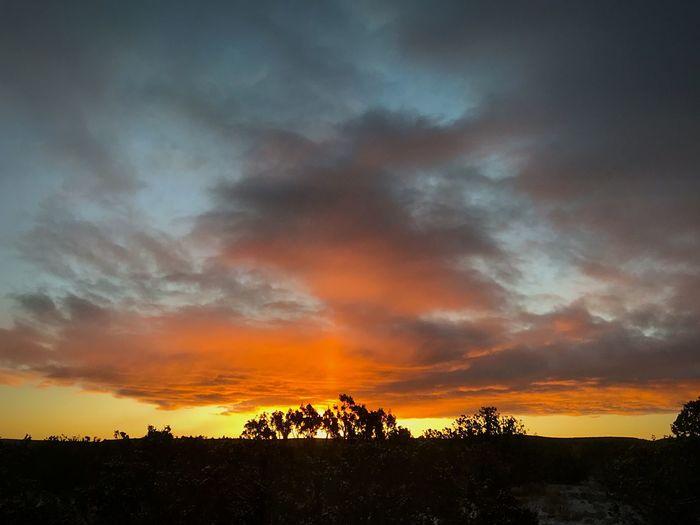 """When The Sunrise Aligns With The Dream"" New Mexico Photography New Mexico Skies New Mexico Sunrise Silhouette Sunrise Cloud - Sky Sky Beauty In Nature Orange Color Scenics Dramatic Sky Landscape Nature"