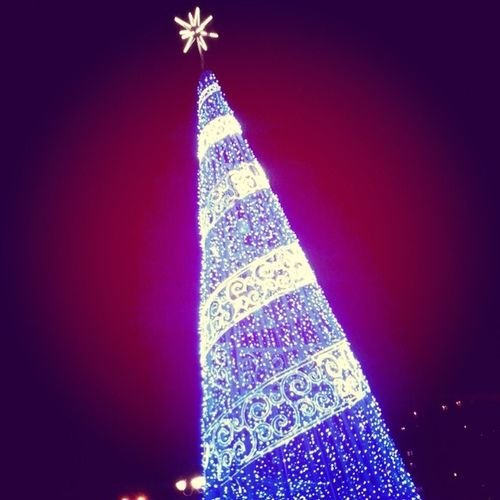ёлка новогодняя_елка новый_год Fir_tree Christmastree christmas_tree