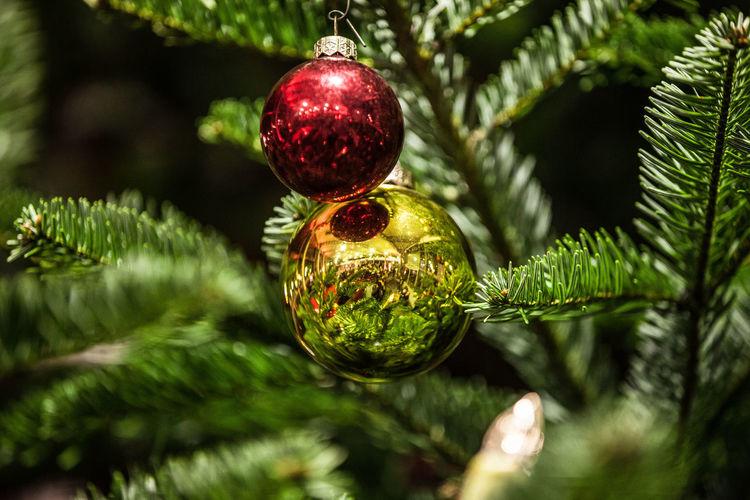 Chrisbaumkugel Deko Weihnachten Weihnachtsschmuck Chrismas Grün Tanne Weihnachtskugel