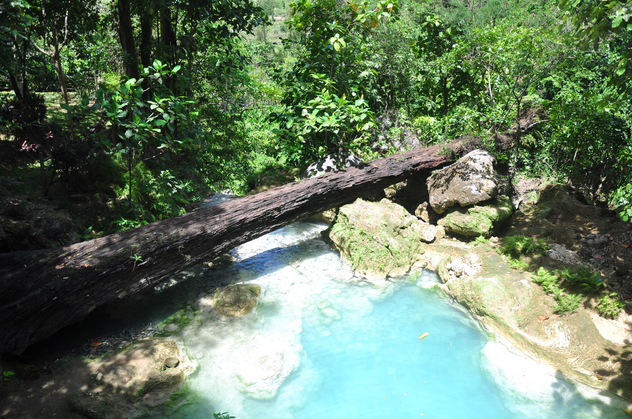 Mag-Aso Falls Travel Nature Nature Photography Kabankalan Negros Occidental Waterfall Bridge Log