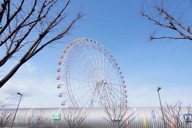 Circle of life First Eyeem Photo Rinku Town premium outlets Osaka,Japan
