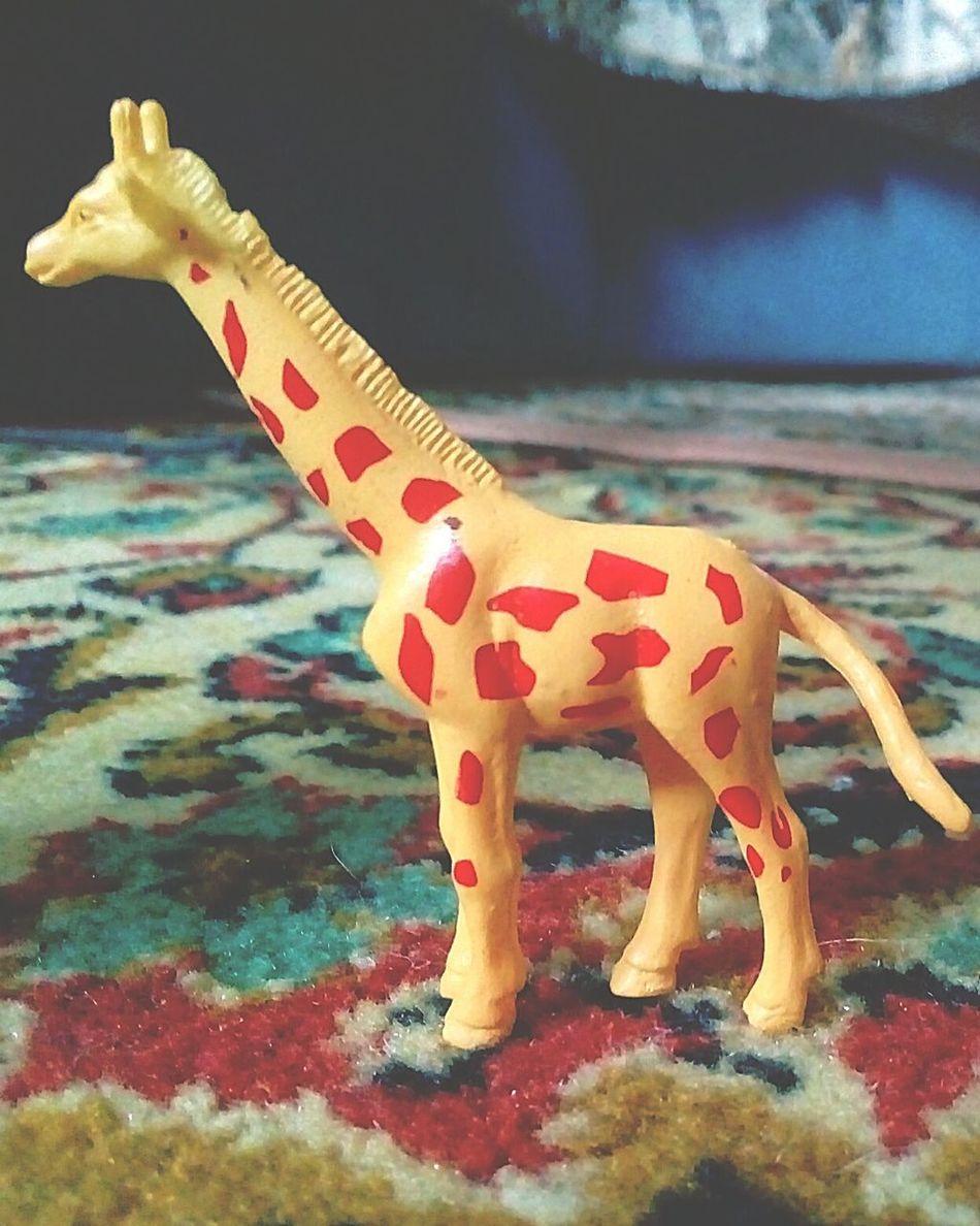 One Animal Yellow Giraffe♥