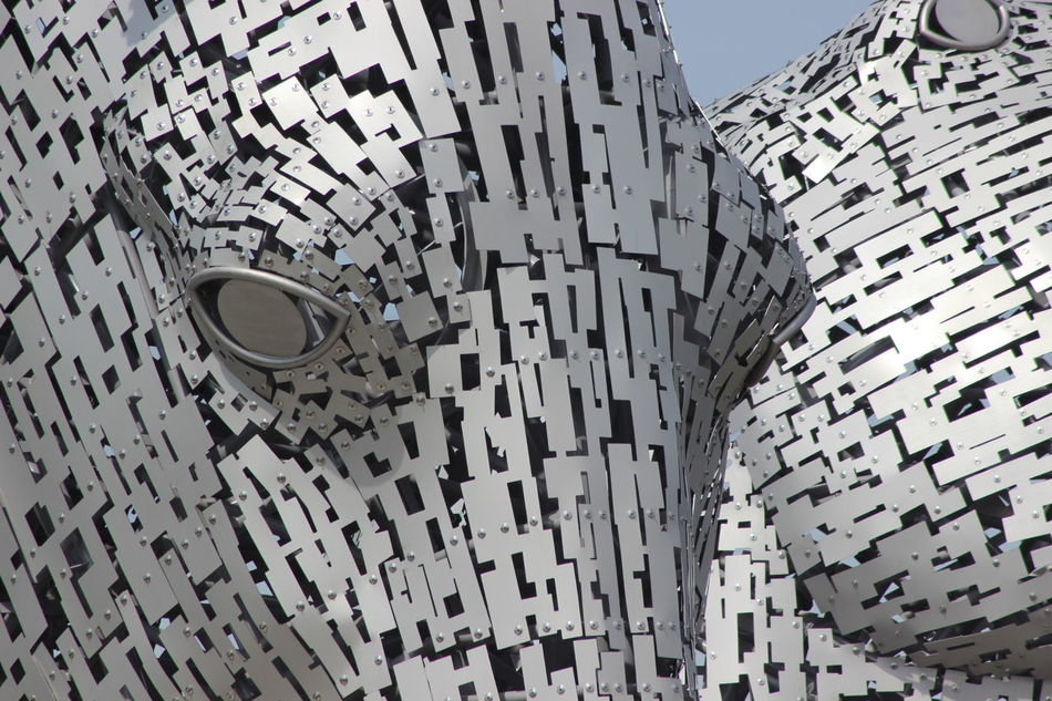 Architecture Built Structure Close-up Day Kelpies Of Falkirk Low Angle View No People