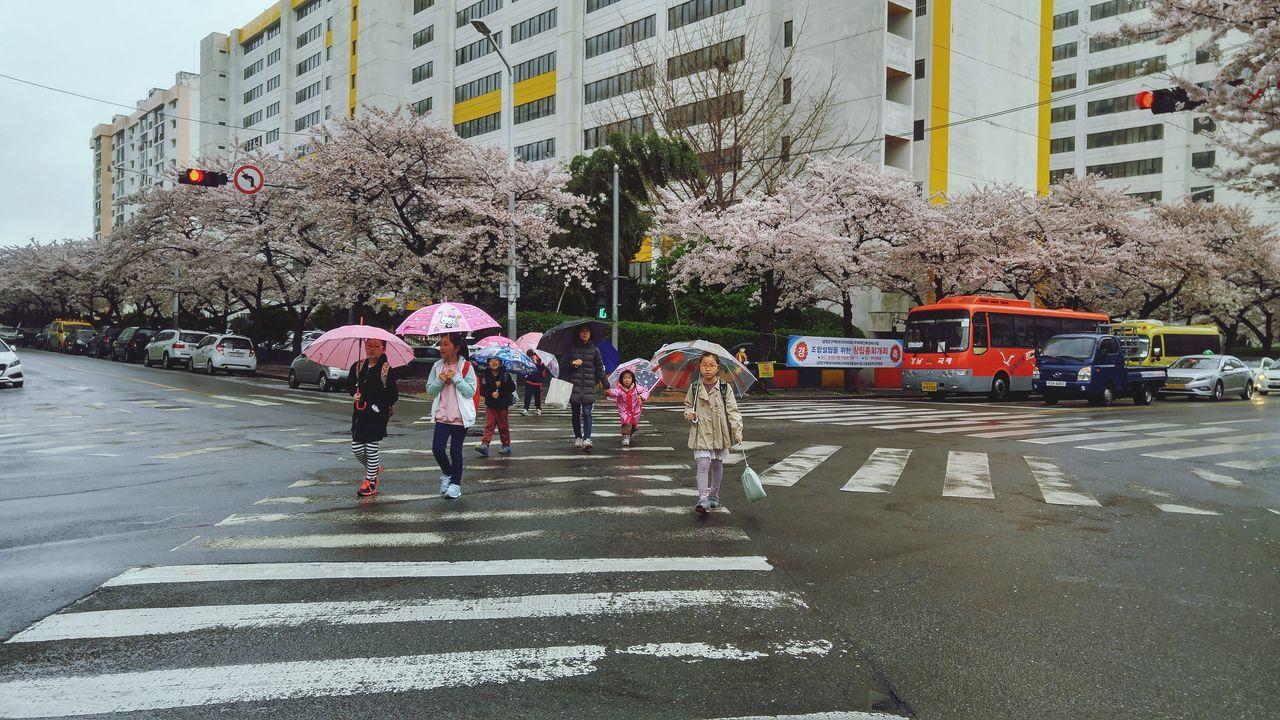 Beautiful stock photos of guten morgen, city, street, walking, building exterior