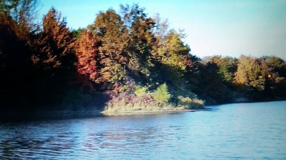 Allegheny River Fall Colors Nature Tranquility Blue Waters Beauty In Nature No People Tranquil Scene Canoeing Clouds And Sky