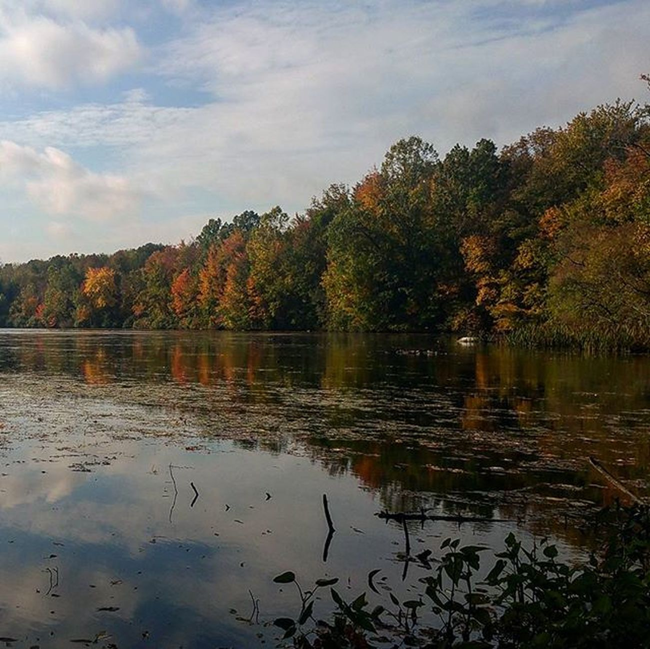 Beautiful fall day Ilovefall Reflections Autum Naturesbeauty Lakenockamixon Pennsylvania Fall Autumcolors Fallcolors