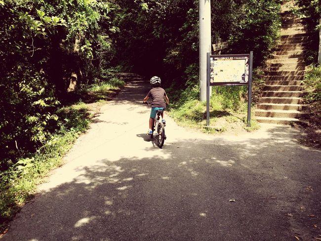自転車 冒険