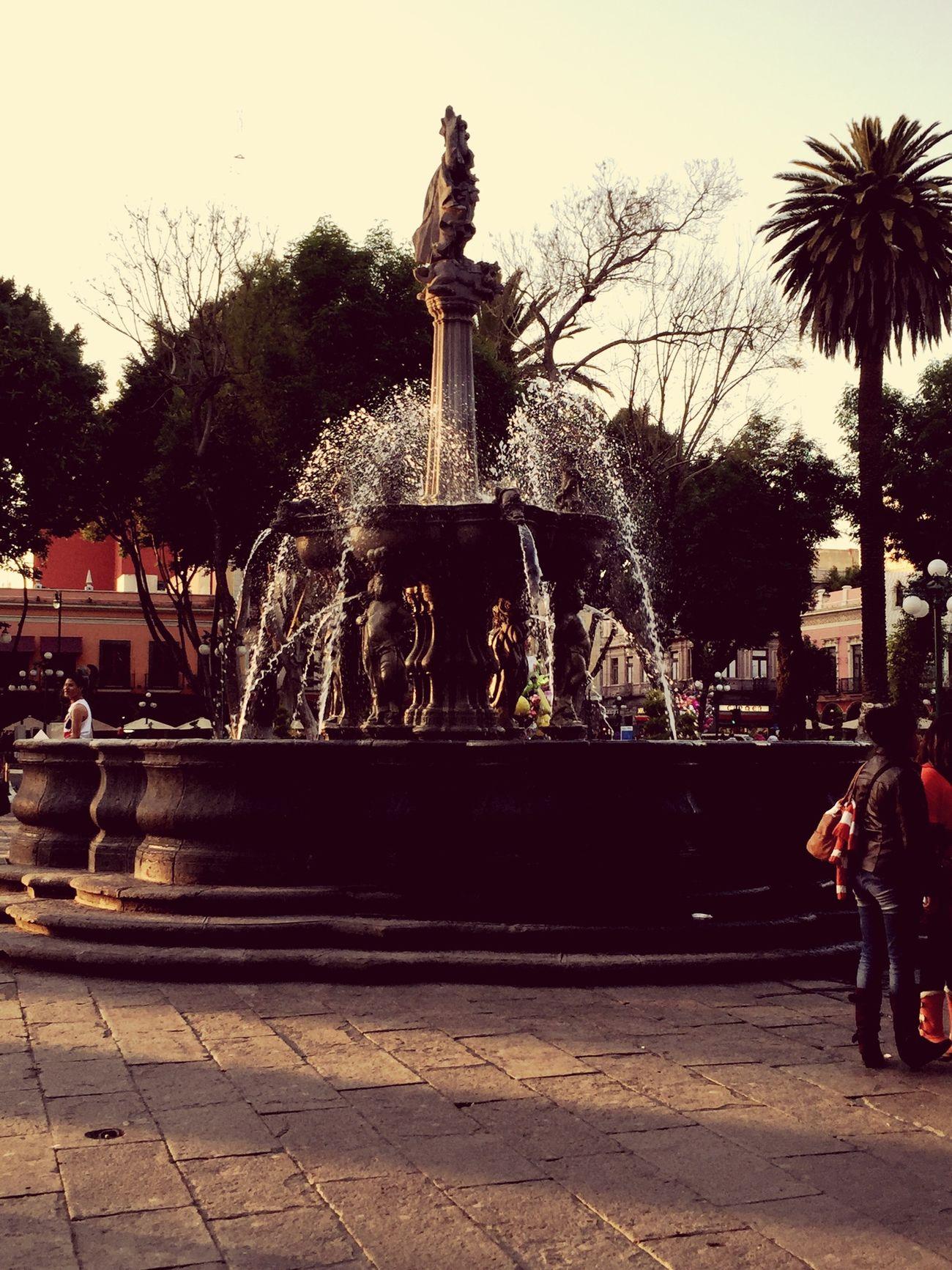 Mi ciudad Puebla De Zaragoza Catedral Zócalo Puebla Mexican Good #life The Best Fuente