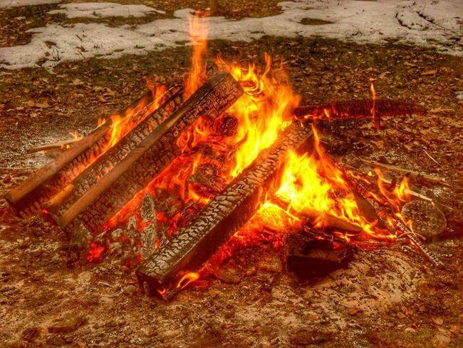 Campfire Nature_collection EyeEm Nature Lover EyeEm Best Shots EyeEmBestPics Picoftheday Photography Nature Fire Campfire#nature#