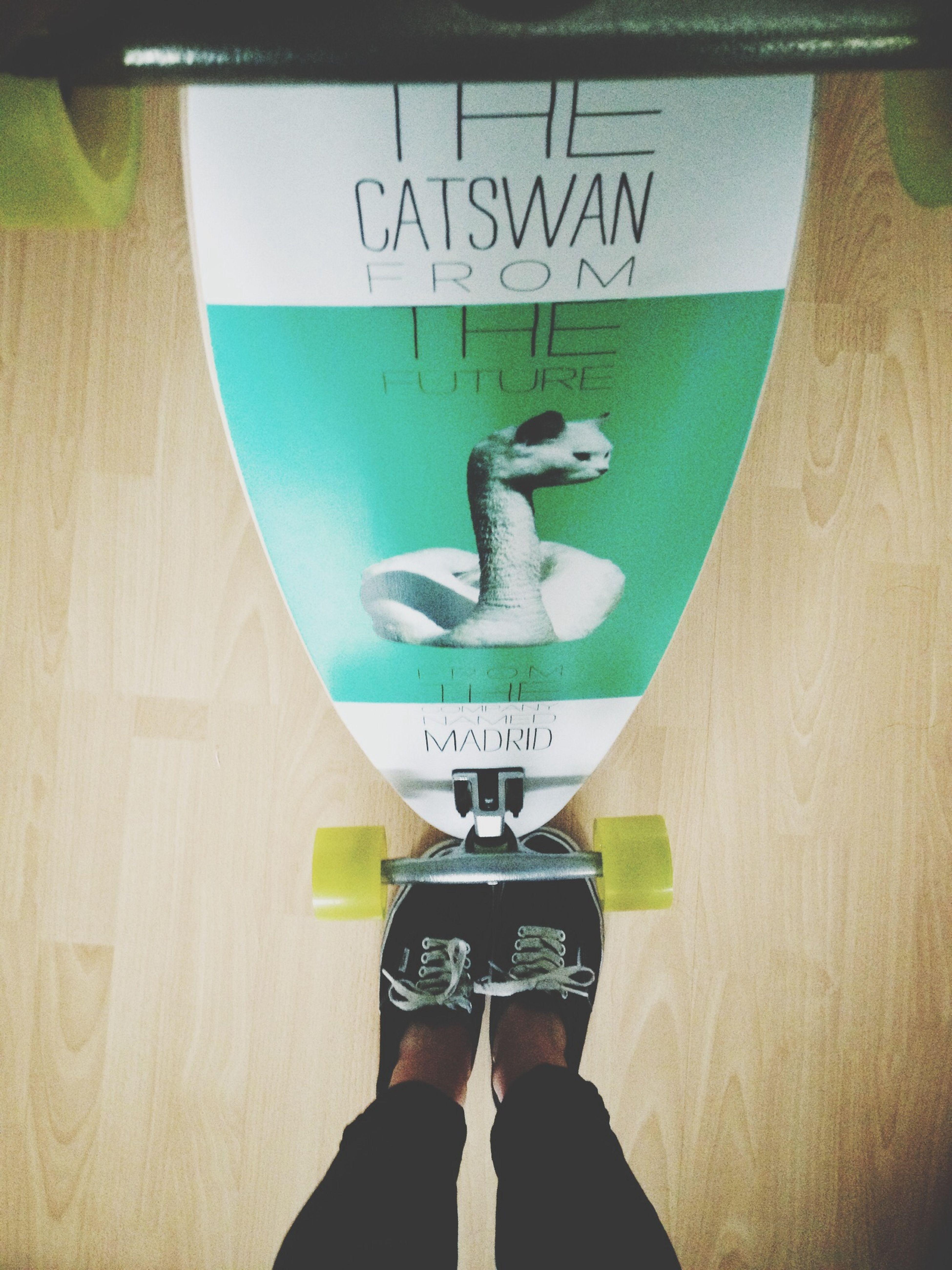 Vans Madrid Catswan Longboarding