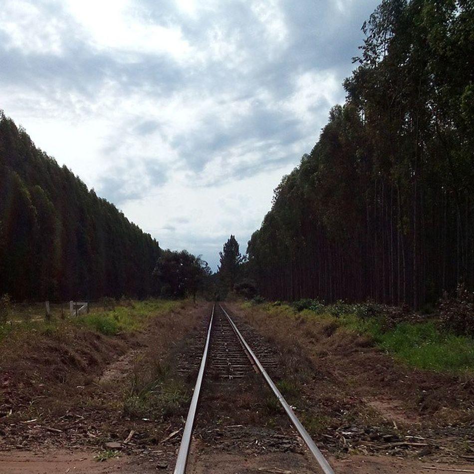 Oia o trem!!! Sonyxperia Backtohome PartiuSP