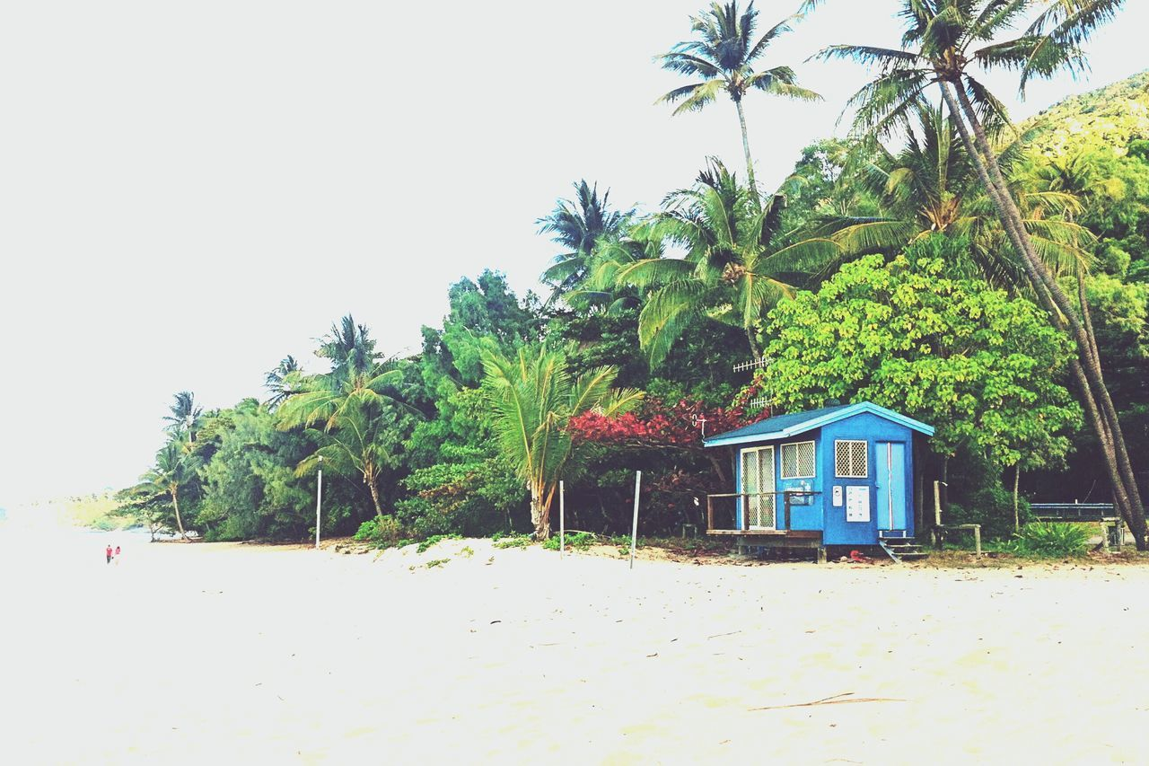 palm tree, beach, tree, sand, clear sky, house, outdoors, no people, day, built structure, nature, growth, architecture, building exterior, sea, beauty in nature, sky