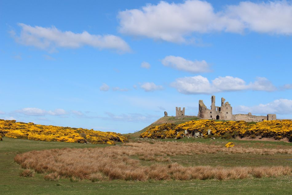 Dunstanburgh Castle Sky Cloud - Sky History Nature Day Beauty In Nature Landscape Scenics Tranquility Grass Outdoors No People Mountain Architecture Travel Destinations Built Structure Building Exterior Geography Northumberland