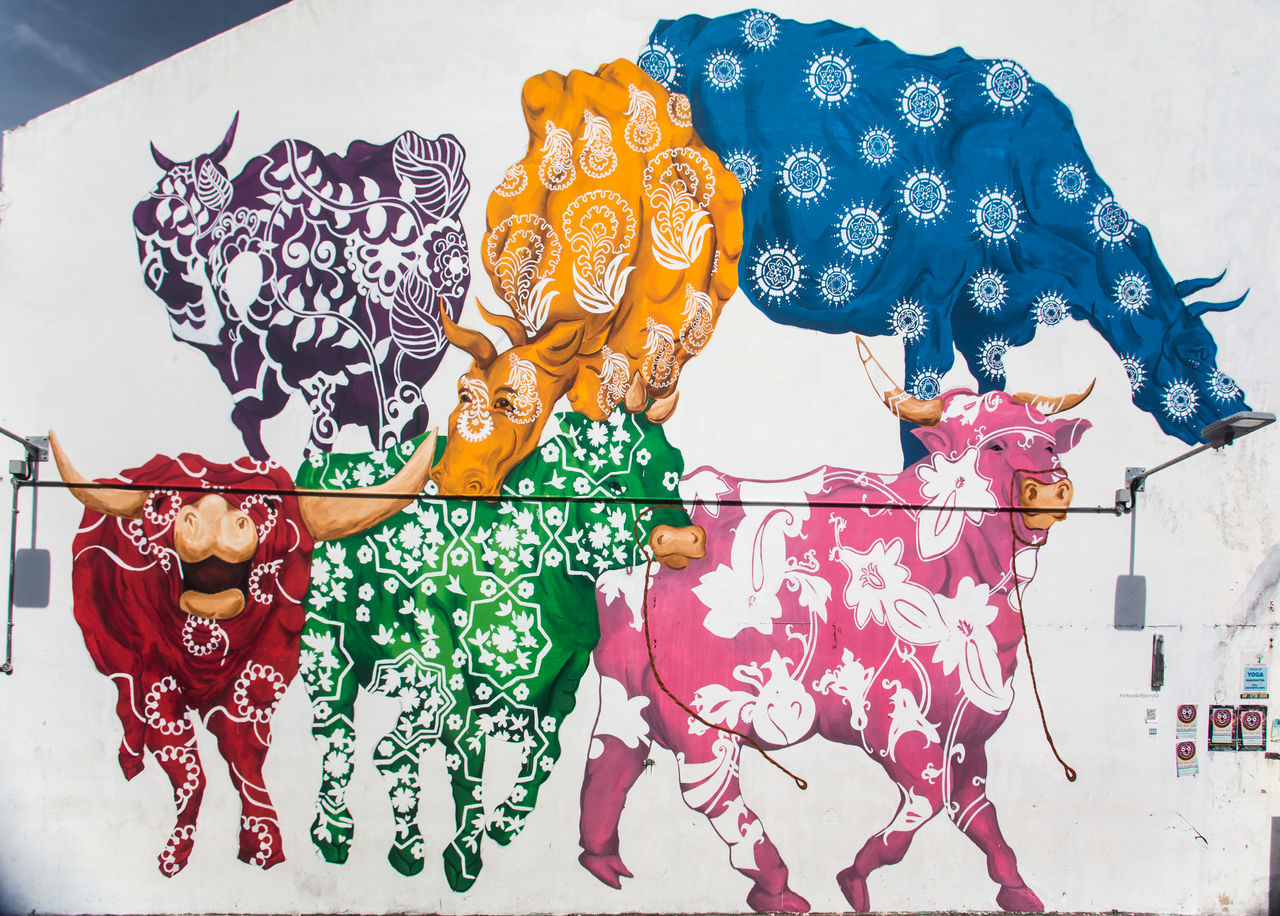 Art Cows Creativity Graffiti Multi Colored Mural Painting Singapore