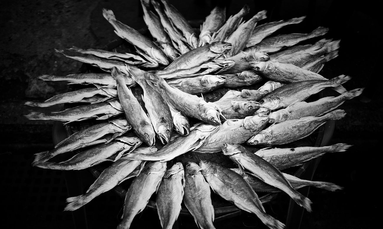 Black And White Day Dead Fısh Death Dried Fish  Hong Kong Life Outdoors Tai O