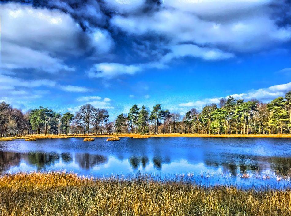 Took this one with my phone while hiking. HDR Landscape Dwingelder Veld Dwingelerveld. Netherlands Drenthe