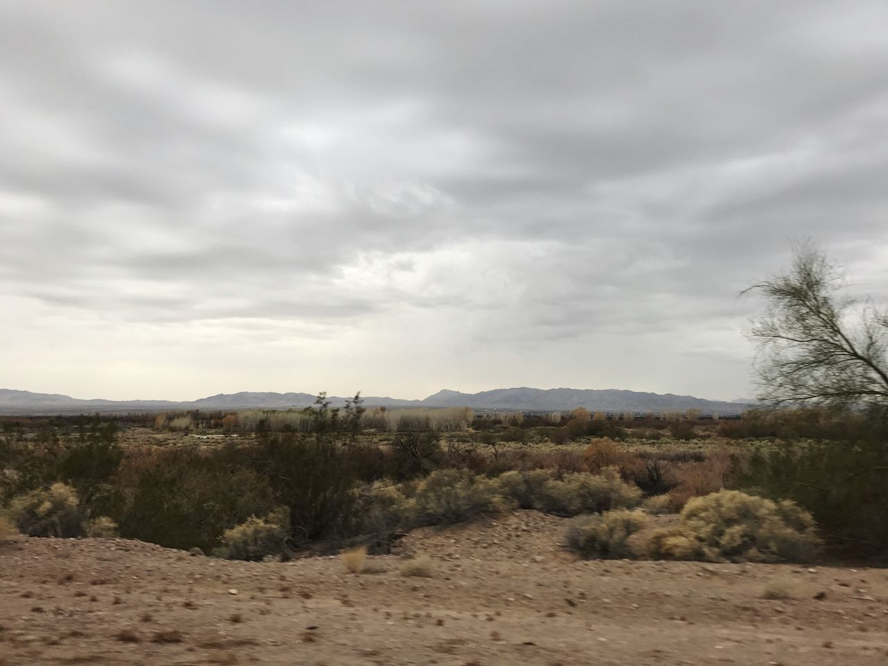 Landscape Nature Sky Tranquil Scene Tranquility Scenics Beauty In Nature Outdoors Non-urban Scene Tree No People Day Cloud - Sky Mountain Arid Climate Marshland  After The Fires Rainy Day Backroad Photography Peaceful Spaces