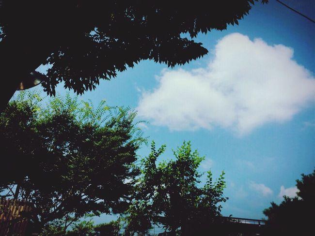 Sky Butiful♥