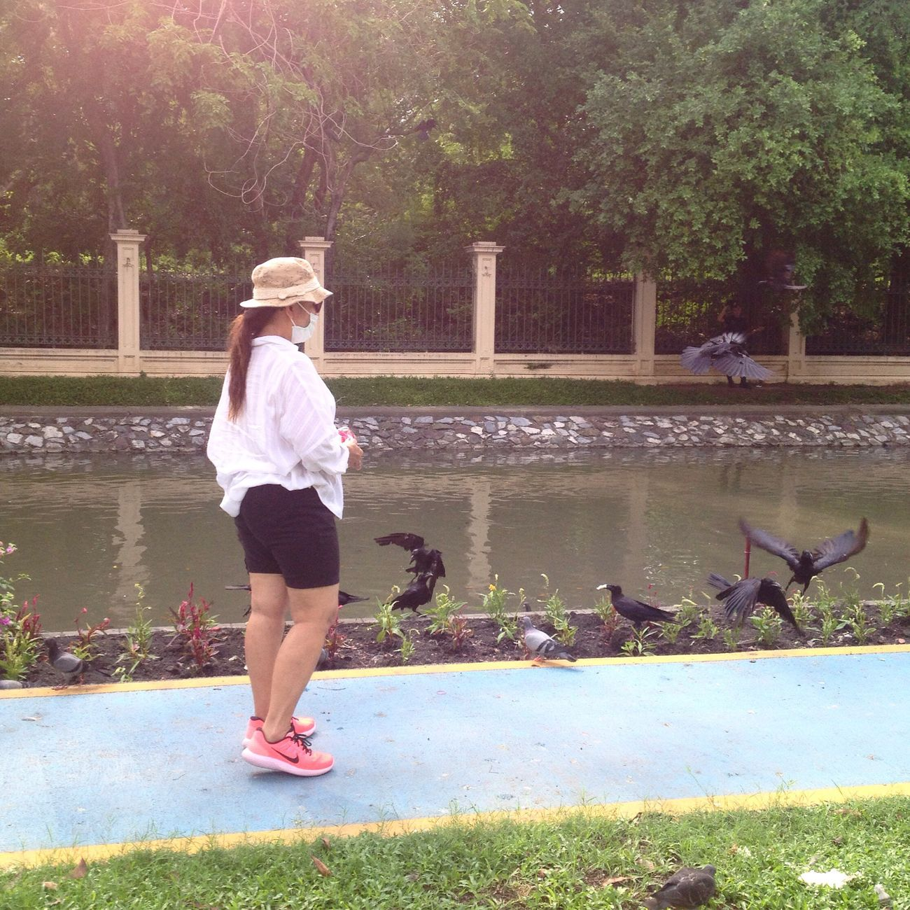 Walking Water Leisure Activity One Person Real People Full Length Lifestyles Outdoors Day Nature Lake Animals In The Wild Young Women Tree Young Adult Large Group Of Animals Bird Grass Mammal People