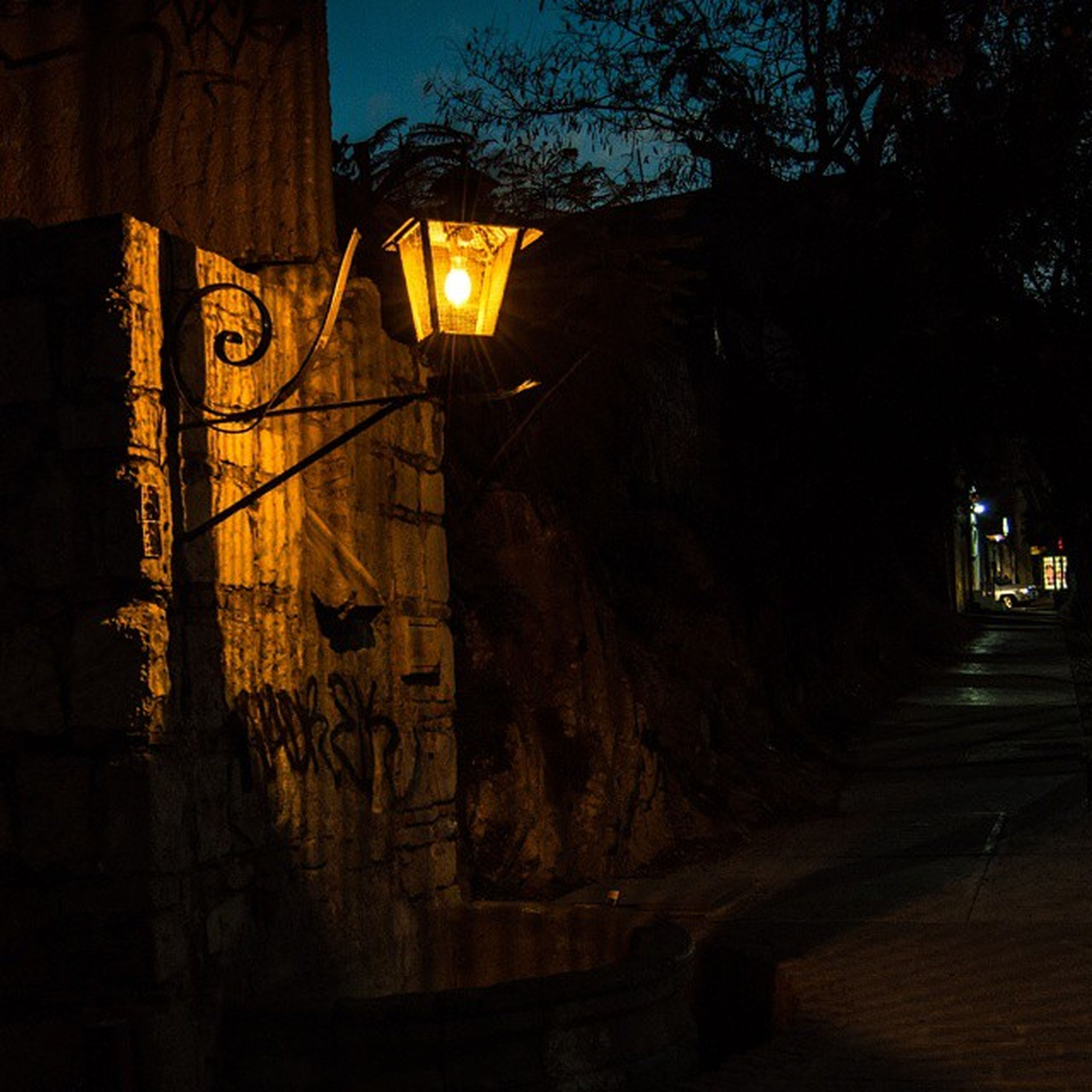 illuminated, night, lighting equipment, tree, street light, built structure, architecture, low angle view, light - natural phenomenon, no people, electric light, dusk, dark, the way forward, shadow, outdoors, wall - building feature, yellow, electricity, building exterior
