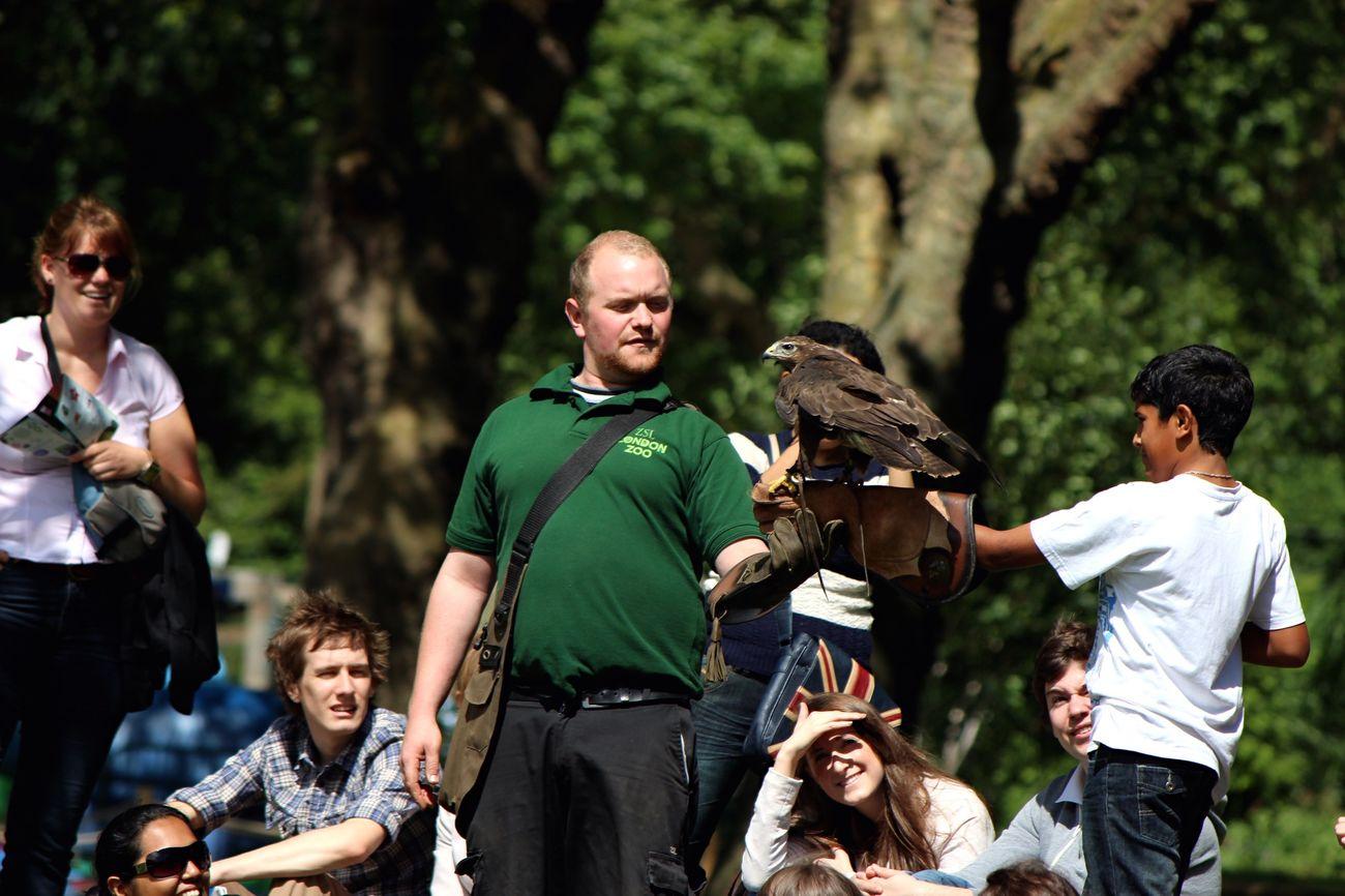 Photography Traveling London Zoo Zsl Bird Eagle People Nature